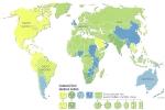 Карта розеток