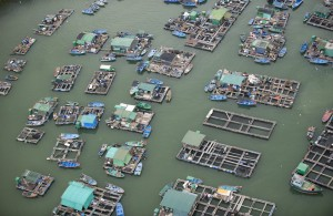 fish-farm-near-ma-wan-town