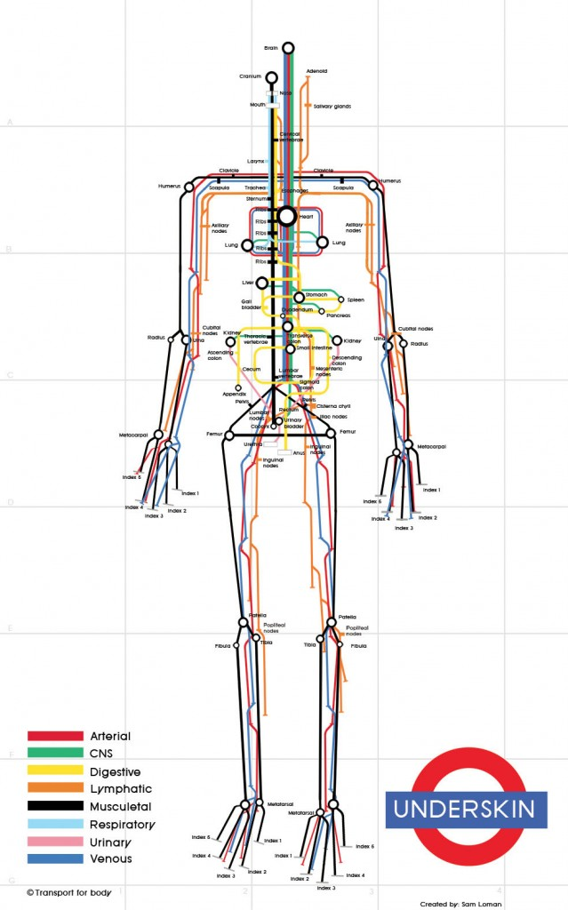Карта скелет метро