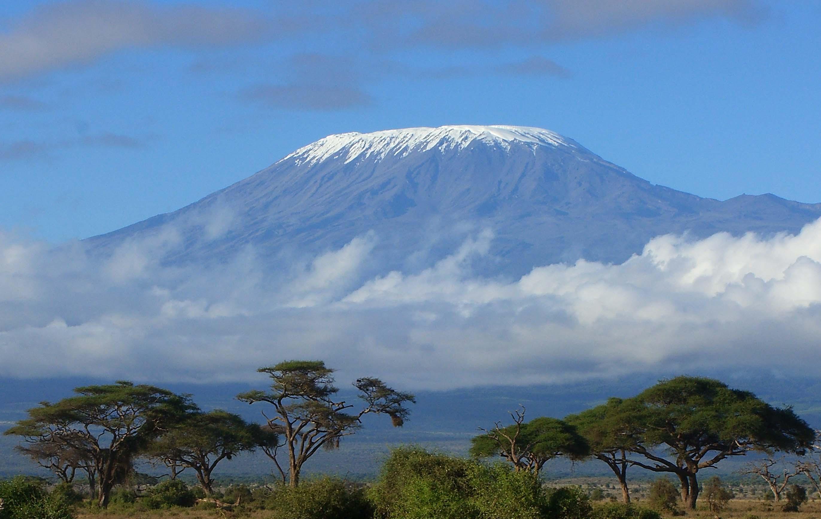 Самый высокий вулкан африки 7 фотография