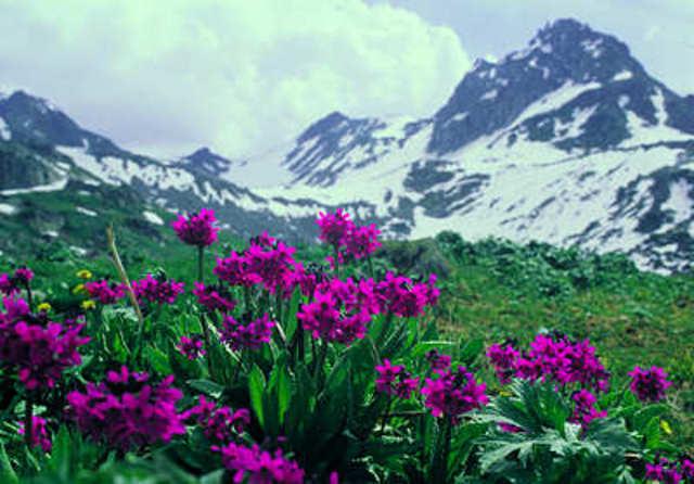 кыргыз фото
