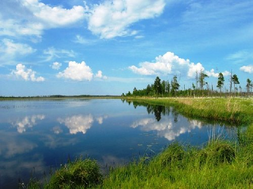Озёра Ленинградской области