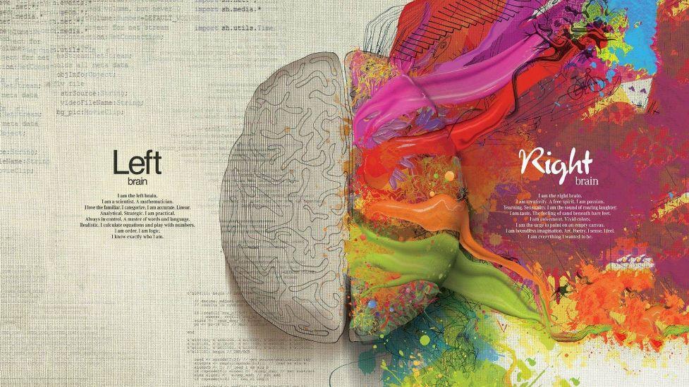mozgi-karta.jpg