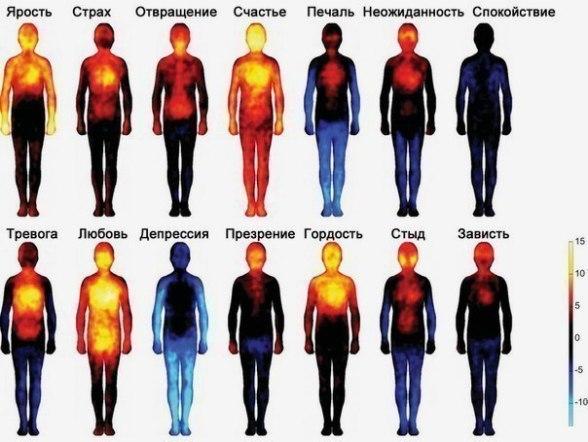 Карта тела, показывающая, где мы чувствуем различные эмоции