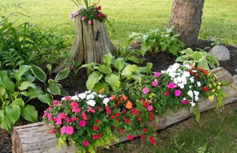Клумба в саду: форма, место и растения